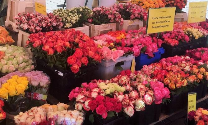 Blumenmarkt1